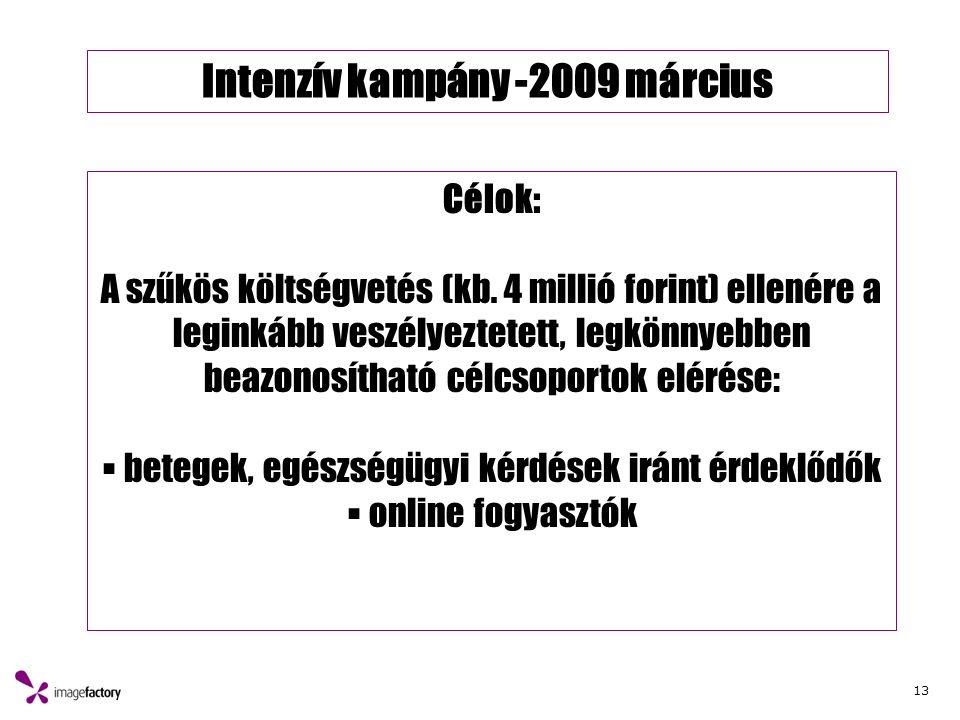 13 Intenzív kampány -2009 március Célok: A szűkös költségvetés (kb. 4 millió forint) ellenére a leginkább veszélyeztetett, legkönnyebben beazonosíthat
