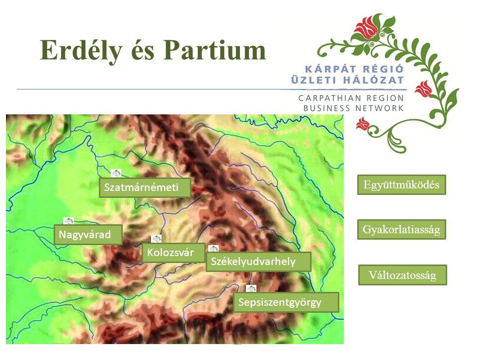 A régió déli része (Arad és Temes megye): Tudomány alapú iparágak, nehézipar, gépgyártás, élelmiszeripar, elektronika, mezőgazdaság, megújuló energia beruházások, turizmus – a román átlagnál magasabb bérezési szint, képzett munkaerő, alacsony munkanélküliség, a román átlagnál fejletteb infrastruktúra A régió északi része (Szatmár és Szilágy megye): mezőgazdaság, autóalkatrész-gyártás, bútoripar, textilipar, borászat, vegyipar - alacsony bérezési szint, képzetlen munkaerő Bihar megye: könnyűipar, elektronika, turizmus, fafeldolgozás, élelmiszeripar, mezőgazdaság, szolgáltatások, megújuló energia beruházások – alacsony bérezési szint, alacsony munkanélküliség, a román átlagnál fejlettebb infrastruktúra, magas a magyar tulajdonú vállalkozások száma Erdély és Partium Partium és Bánát Erdély kapuja