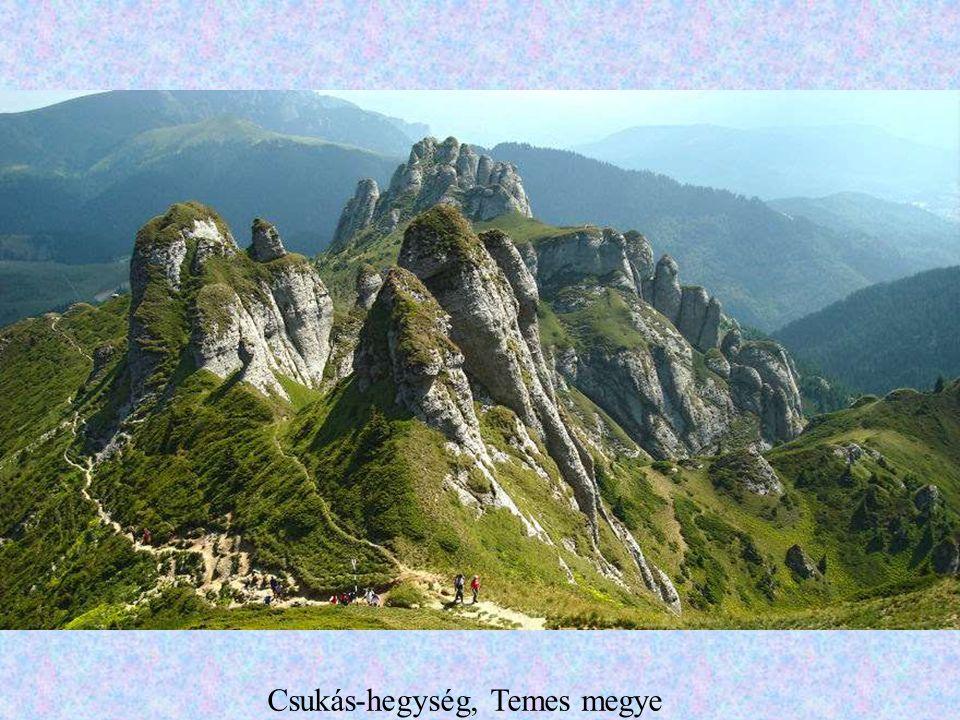 A Zsil völgye
