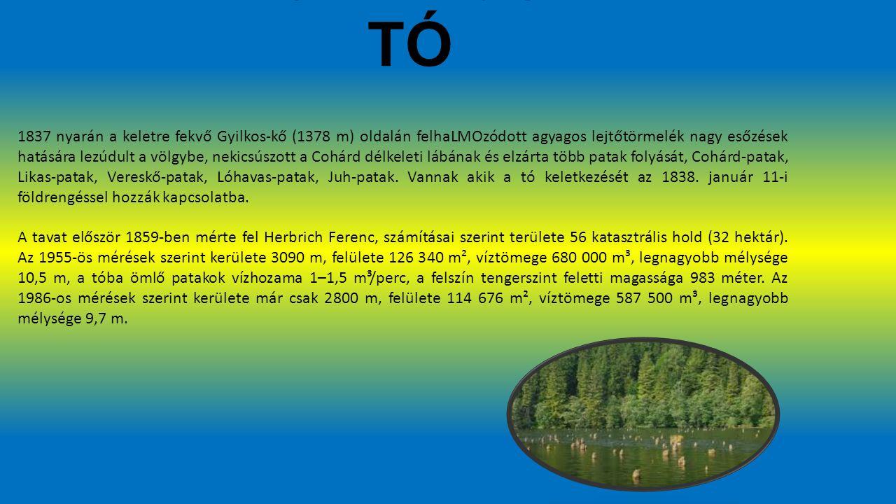 GYILKOS TÓ 1837 nyarán a keletre fekvő Gyilkos-kő (1378 m) oldalán felhaLMOzódott agyagos lejtőtörmelék nagy esőzések hatására lezúdult a völgybe, nekicsúszott a Cohárd délkeleti lábának és elzárta több patak folyását, Cohárd-patak, Likas-patak, Vereskő-patak, Lóhavas-patak, Juh-patak.
