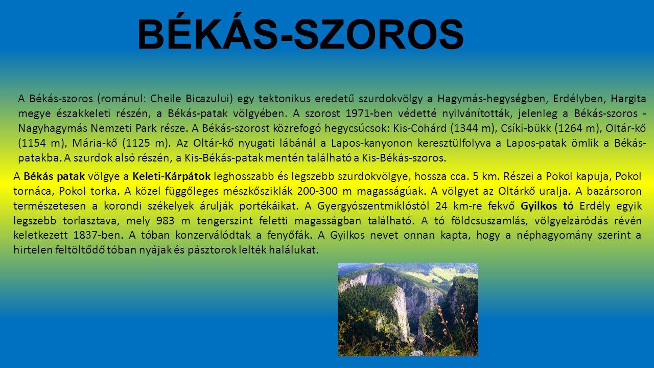 BÉKÁS-SZOROS A Békás-szoros (románul: Cheile Bicazului) egy tektonikus eredetű szurdokvölgy a Hagymás-hegységben, Erdélyben, Hargita megye északkeleti részén, a Békás-patak völgyében.