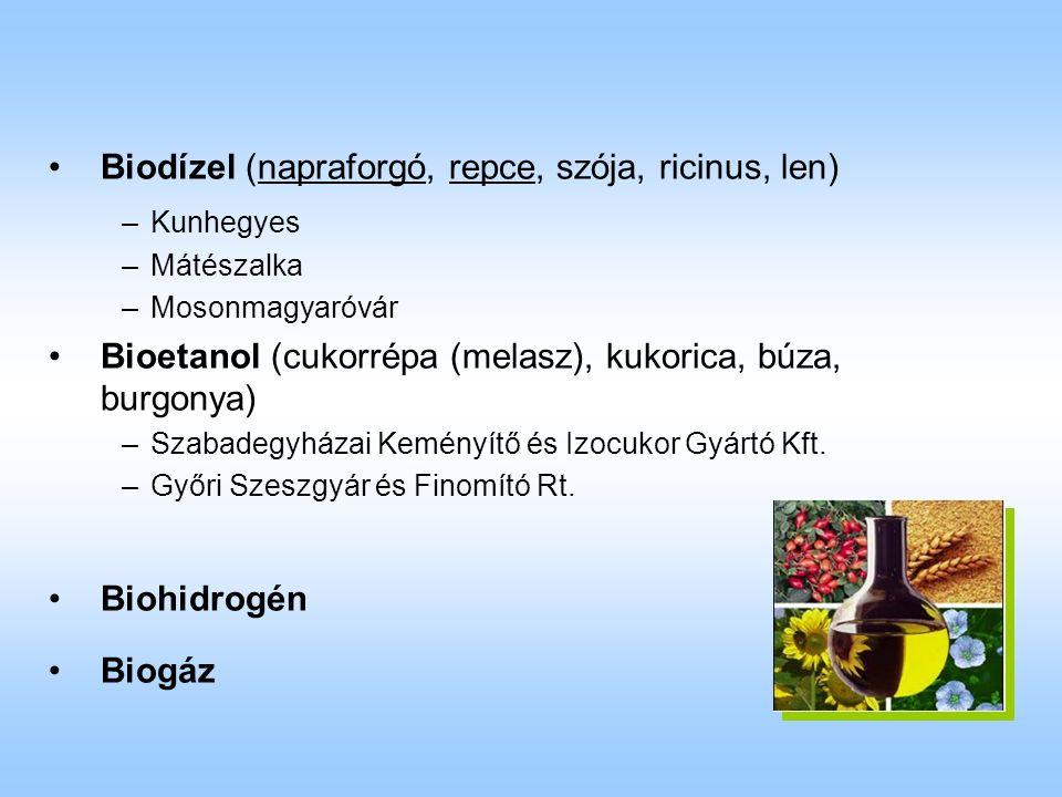 Biodízel (napraforgó, repce, szója, ricinus, len) –Kunhegyes –Mátészalka –Mosonmagyaróvár Bioetanol (cukorrépa (melasz), kukorica, búza, burgonya) –Szabadegyházai Keményítő és Izocukor Gyártó Kft.