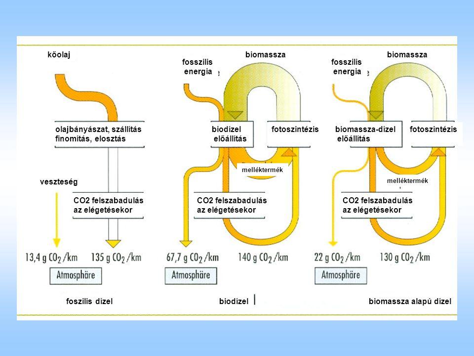 kőolaj olajbányászat, szállítás finomítás, elosztás veszteség CO2 felszabadulás az elégetésekor biomassza fosszilis energia fotoszintézisbiodízel előállítás CO2 felszabadulás az elégetésekor CO2 felszabadulás az elégetésekor fosszilis energia melléktermék biomassza alapú dízelbiodízel biomassza-dízel előállítás fotoszintézis biomassza foszilis dízel