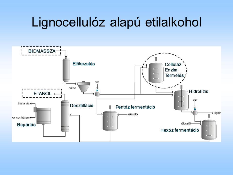 Lignocellulóz alapú etilalkohol