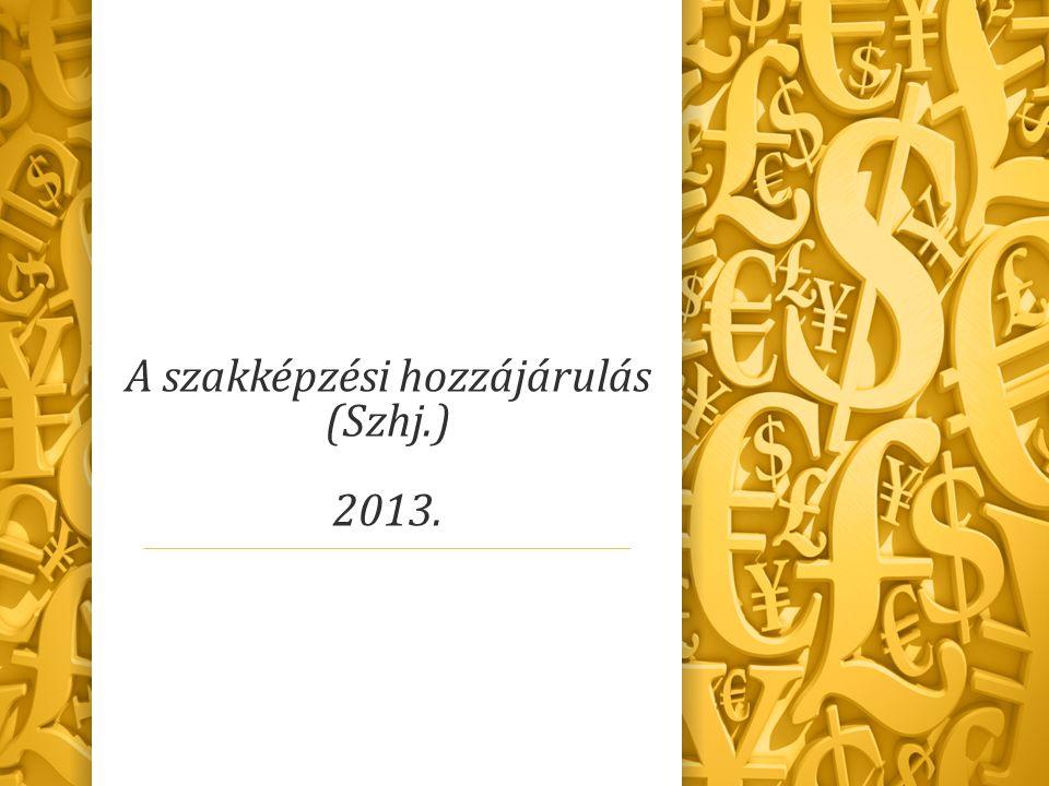 A szakképzési hozzájárulás (Szhj.) 2013.