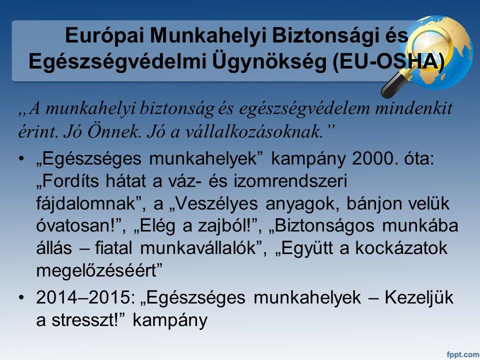 """Európai Munkahelyi Biztonsági és Egészségvédelmi Ügynökség (EU-OSHA) """"A munkahelyi biztonság és egészségvédelem mindenkit érint. Jó Önnek. Jó a vállal"""