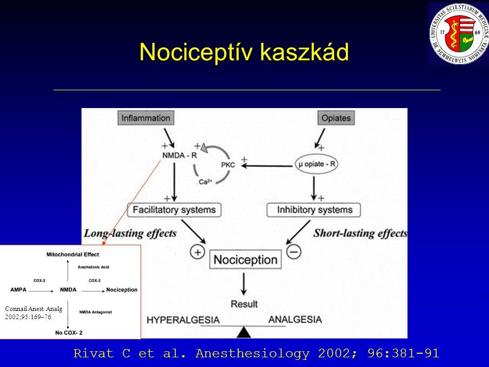 Nociceptív kaszkád Rivat C et al. Anesthesiology 2002; 96:381-91 Connail Anest Analg 2002;95:169–76