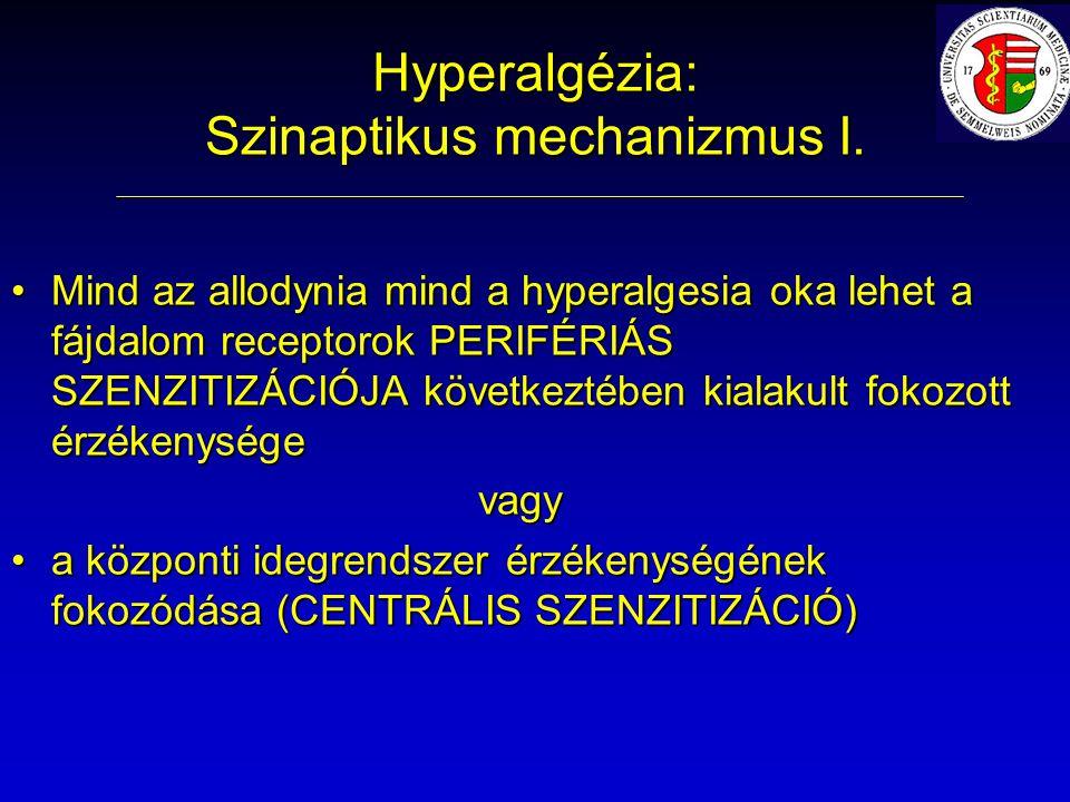 Hyperalgézia: Szinaptikus mechanizmus I.