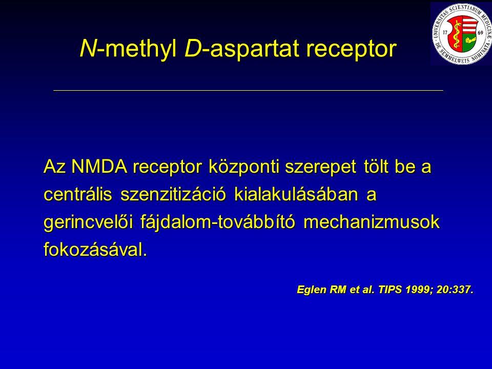 N-methyl D-aspartat receptor Az NMDA receptor központi szerepet tölt be a centrális szenzitizáció kialakulásában a gerincvelői fájdalom-továbbító mechanizmusok fokozásával.