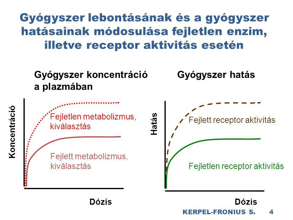 Gyógyszer lebontásának és a gyógyszer hatásainak módosulása fejletlen enzim, illetve receptor aktivitás esetén Gyógyszer koncentráció a plazmában Fejletlen metabolizmus, kiválasztás Fejlett metabolizmus, kiválasztás Dózis Koncentráció Dózis Fejlett receptor aktivitás Fejletlen receptor aktivitás Gyógyszer hatás Hatás KERPEL-FRONIUS S.