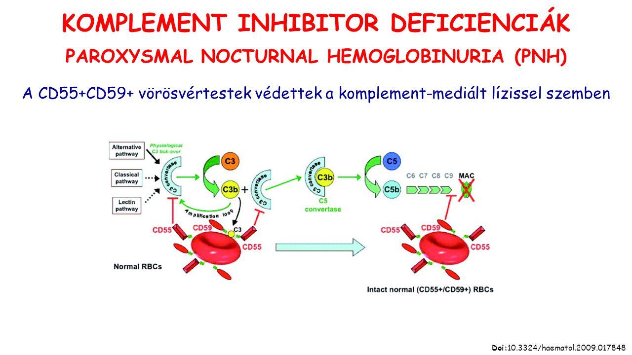 A CD55+CD59+ vörösvértestek védettek a komplement-mediált lízissel szemben Doi:10.3324/haematol.2009.017848 KOMPLEMENT INHIBITOR DEFICIENCIÁK PAROXYSMAL NOCTURNAL HEMOGLOBINURIA (PNH)