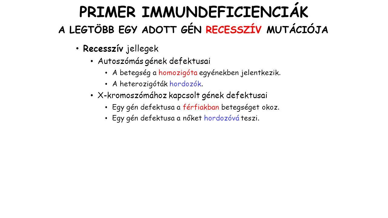 IMMUNDEFICIENCIA GÉNEK AZ X KROMOSZÓMÁN CGD: Krónikus granulomatózus betegség WAS: Wiscott-Aldrich szindróma SCID: Súlyos kombinált immundeficiencia (Severe Combined Immunodeficiency) XLA: X-kapcsolt agammaglobulinémia XLP: X-kapcsolt limfoproliferatív betegség XLHM: X-kapcsolt hiper-IgM szindróma