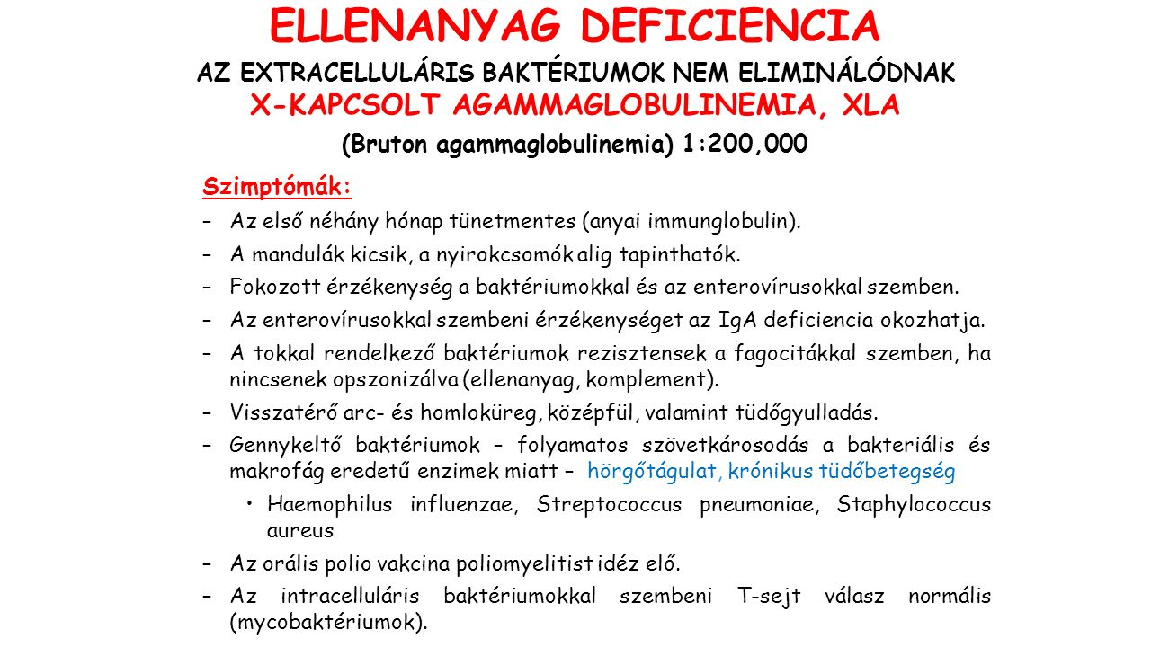 ELLENANYAG DEFICIENCIA AZ EXTRACELLULÁRIS BAKTÉRIUMOK NEM ELIMINÁLÓDNAK X-KAPCSOLT AGAMMAGLOBULINEMIA, XLA (Bruton agammaglobulinemia) 1:200,000 Szimptómák: –Az első néhány hónap tünetmentes (anyai immunglobulin).