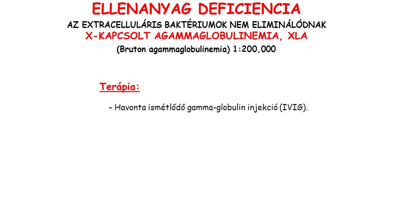 Terápia: - Havonta ismétlődő gamma-globulin injekció (IVIG).
