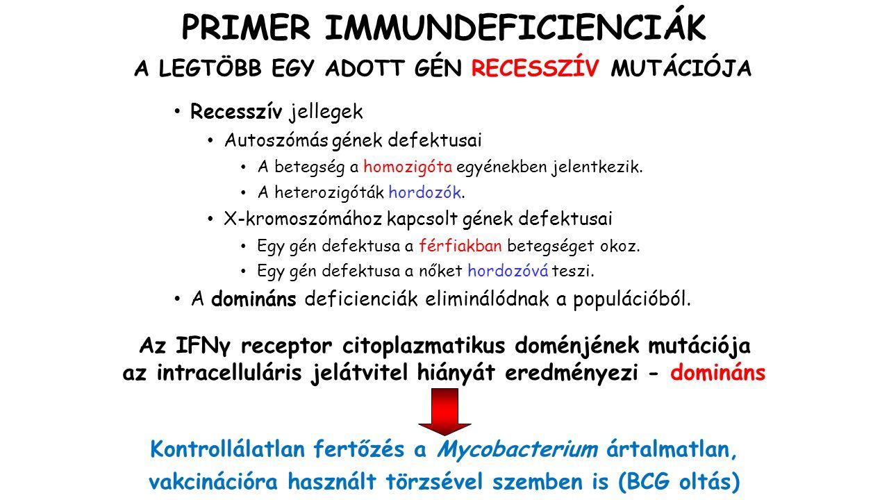 WISKOTT-ALDRICH SZINDRÓMA (WAS) Az aktin citoszkeleton reorganizációjának defektje Genetikai háttér: - A fehérvérsejtekben és a megakariocitákban expresszálódó WAS protein (WASP) mutációja.