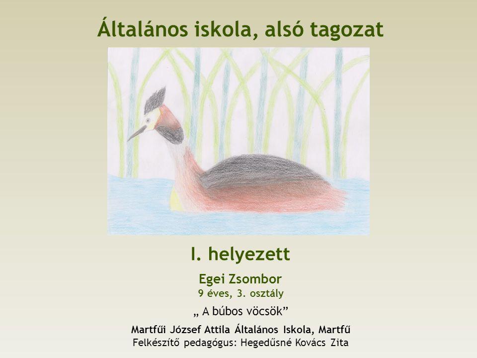 Általános iskola, alsó tagozat I. helyezett Egei Zsombor 9 éves, 3.