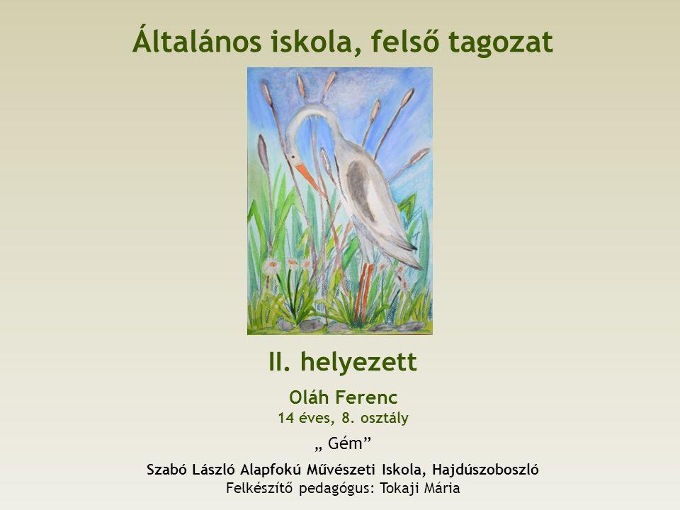 Általános iskola, felső tagozat II. helyezett Oláh Ferenc 14 éves, 8.
