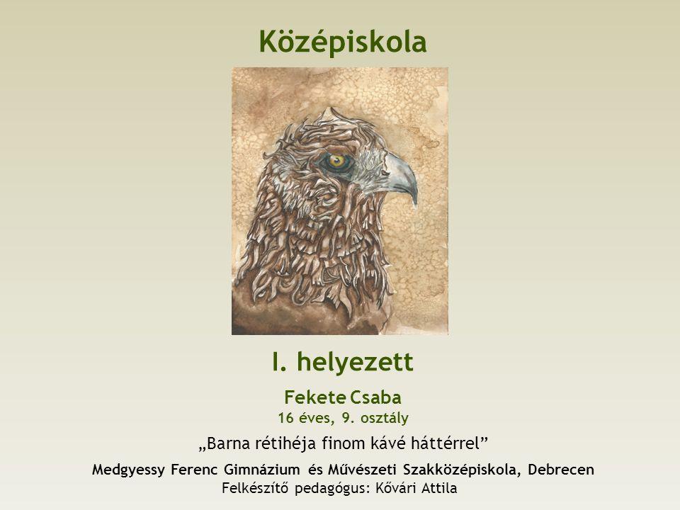 Középiskola I. helyezett Fekete Csaba 16 éves, 9.