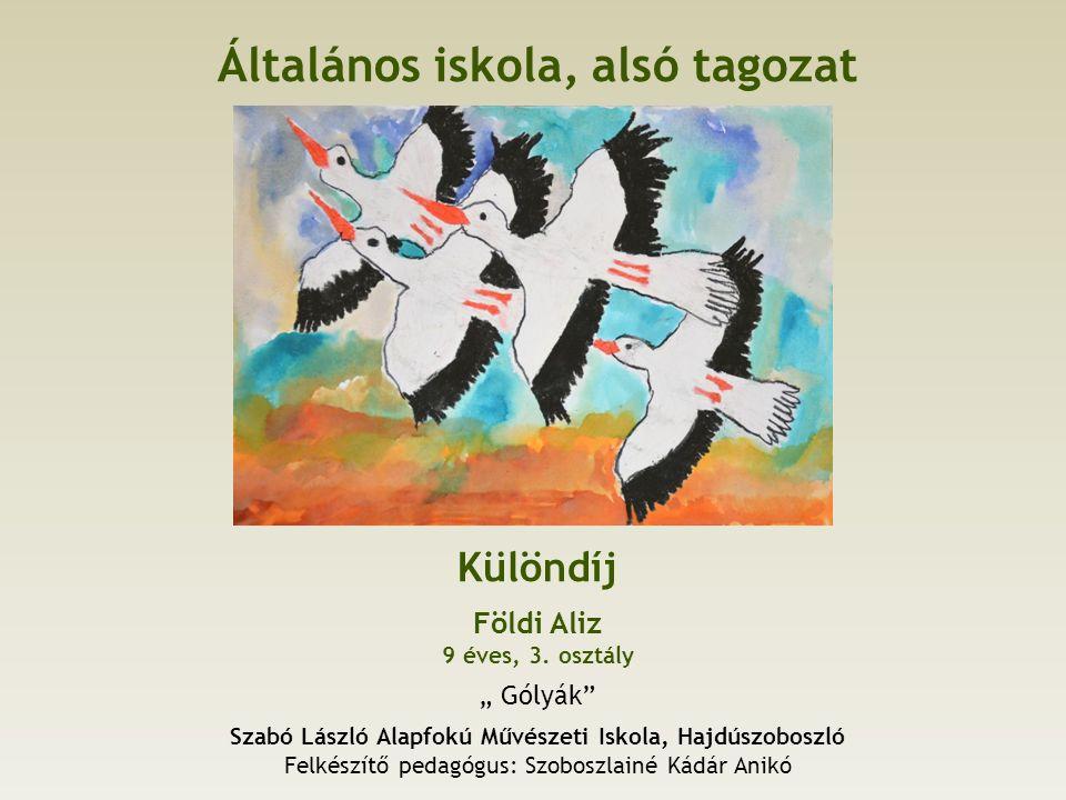Általános iskola, alsó tagozat Különdíj Földi Aliz 9 éves, 3.