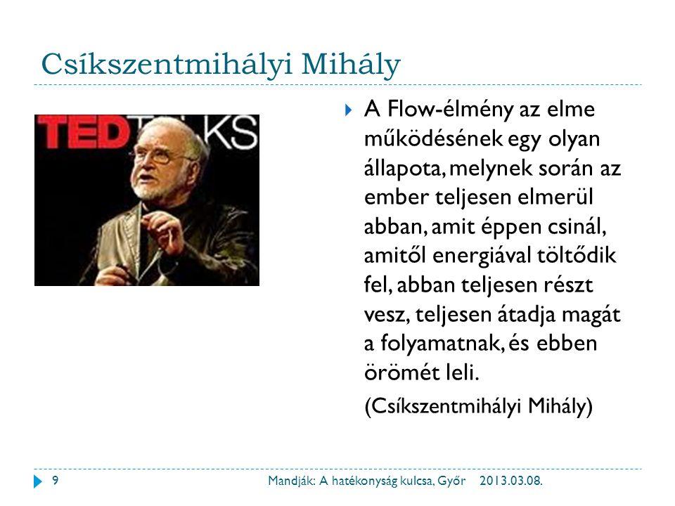 2013.03.08.Mandják: A hatékonyság kulcsa, Győr10