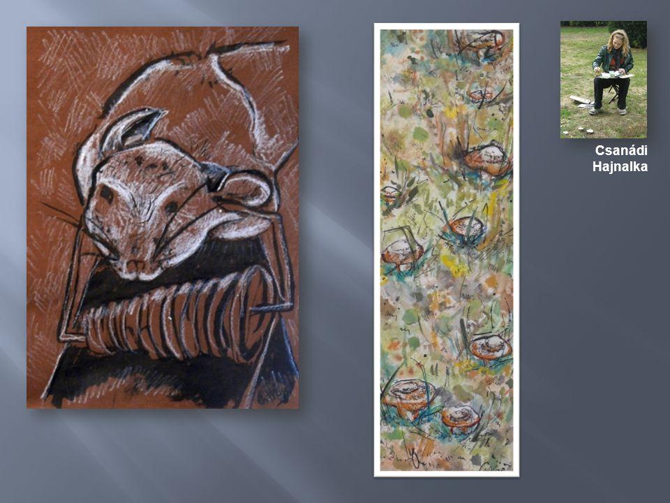 A ragyogóan szép ősz eredményes munkát tett lehetővé, ezért a decemberi beszámoló kiállítás anyagát kiegészítjük az őszi képekkel.