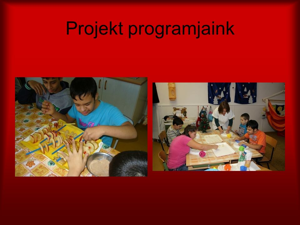 Projekt programjaink