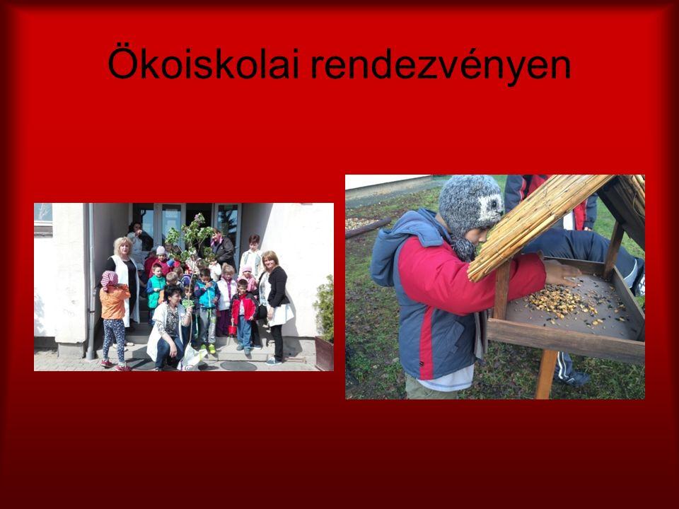 Ökoiskolai rendezvényen