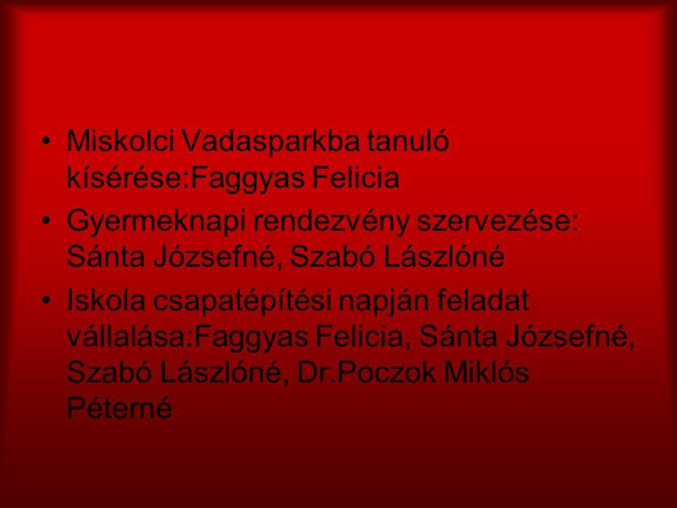 Miskolci Vadasparkba tanuló kísérése:Faggyas Felicia Gyermeknapi rendezvény szervezése: Sánta Józsefné, Szabó Lászlóné Iskola csapatépítési napján fel