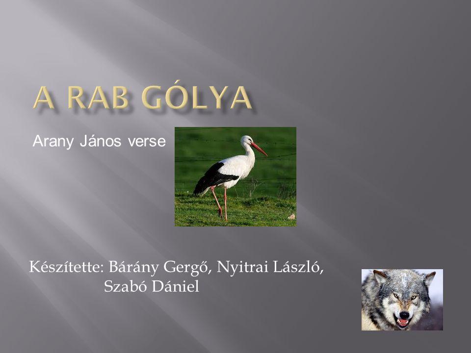 Készítette: Bárány Gergő, Nyitrai László, Szabó Dániel Arany János verse