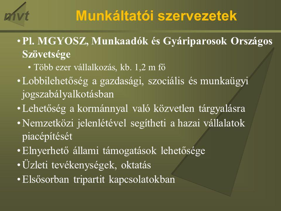 mvtMunkáltatói szervezetek Pl.