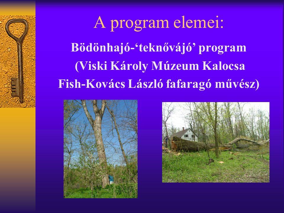 A program elemei: Bödönhajó-'teknővájó' program (Viski Károly Múzeum Kalocsa Fish-Kovács László fafaragó művész)