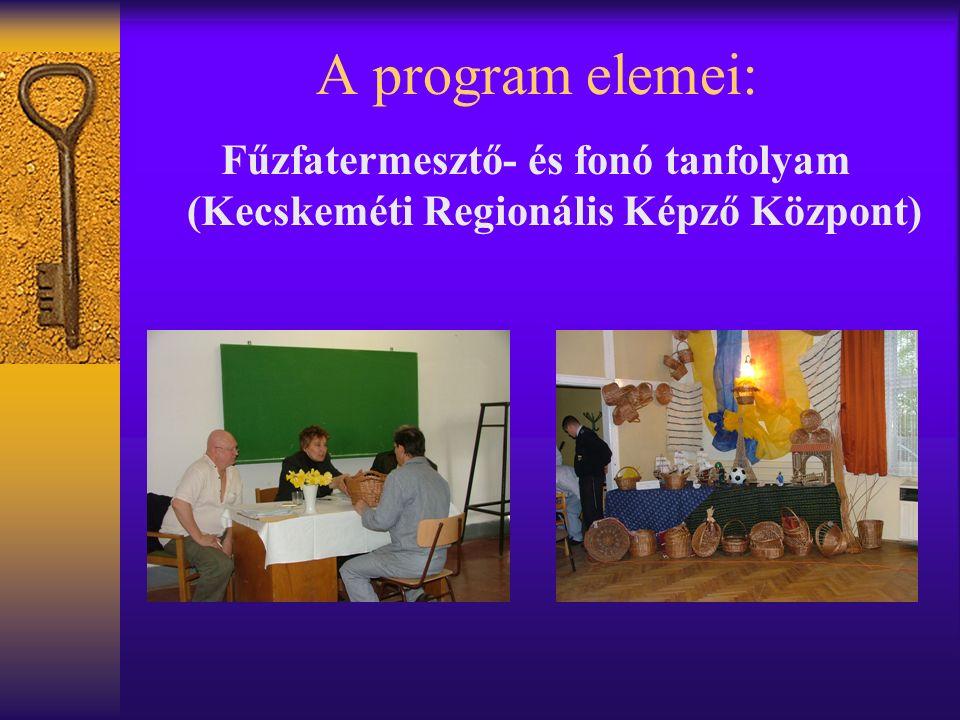 A program elemei: Fűzfatermesztő- és fonó tanfolyam (Kecskeméti Regionális Képző Központ)