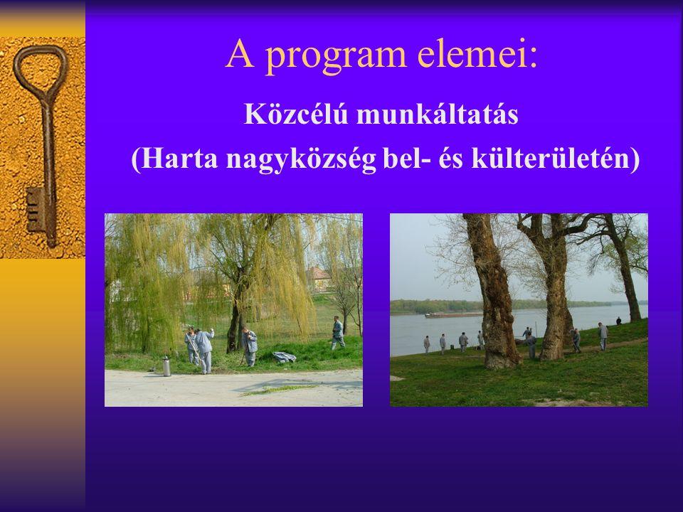 A program elemei: Közcélú munkáltatás (Harta nagyközség bel- és külterületén)