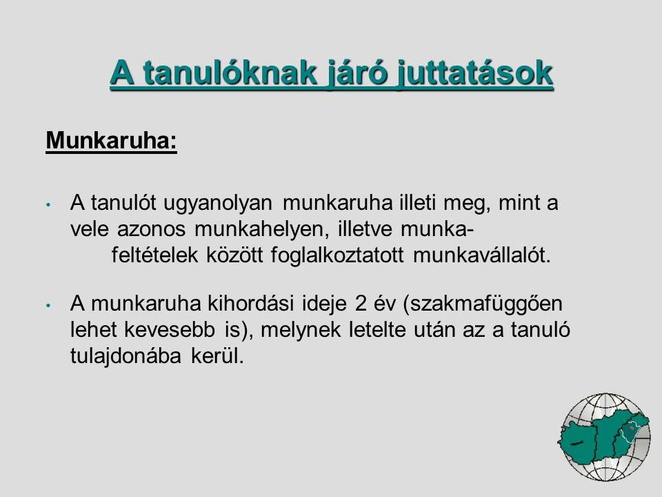 Munkaruha: A tanulót ugyanolyan munkaruha illeti meg, mint a vele azonos munkahelyen, illetve munka- feltételek között foglalkoztatott munkavállalót.