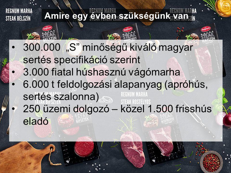 """Amire egy évben szükségünk van 300.000 """"S minőségű kiváló magyar sertés specifikáció szerint 3.000 fiatal húshasznú vágómarha 6.000 t feldolgozási alapanyag (apróhús, sertés szalonna) 250 üzemi dolgozó – közel 1.500 frisshús eladó"""