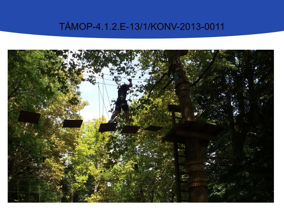 TÁMOP-4.1.2.E-13/1/KONV-2013-0011