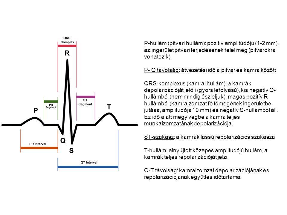 P-hullám (pitvari hullám): pozitív amplitúdójú (1-2 mm), az ingerület pitvari terjedésének felel meg (pitvarokra vonatozik) P- Q távolság: átvezetési idő a pitvar és kamra között QRS-komplexus (kamrai hullám): a kamrák depolarizációját jelöli (gyors lefolyású), kis negatív Q- hullámból (nem mindig észleljük), magas pozitív R- hullámból (kamraizomzat fő tömegének ingerületbe jutása, amplitúdója 10 mm) és negatív S-hullámból áll.