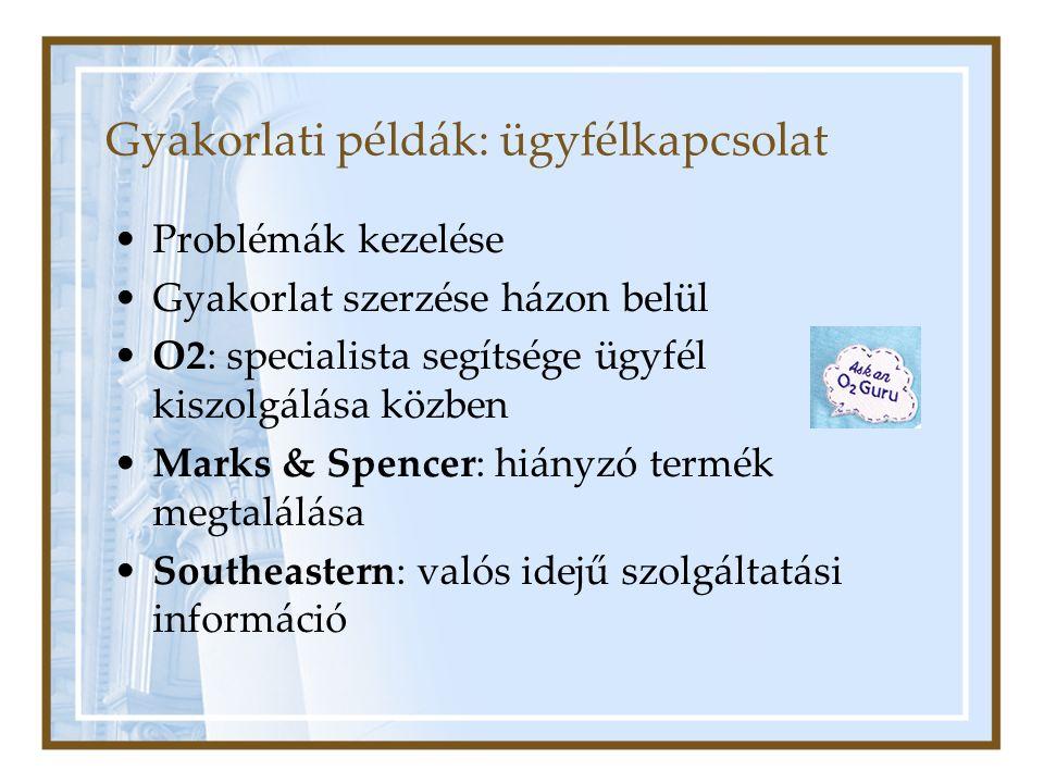 Gyakorlati példák: ügyfélkapcsolat Problémák kezelése Gyakorlat szerzése házon belül O2: specialista segítsége ügyfél kiszolgálása közben Marks & Spencer: hiányzó termék megtalálása Southeastern: valós idejű szolgáltatási információ
