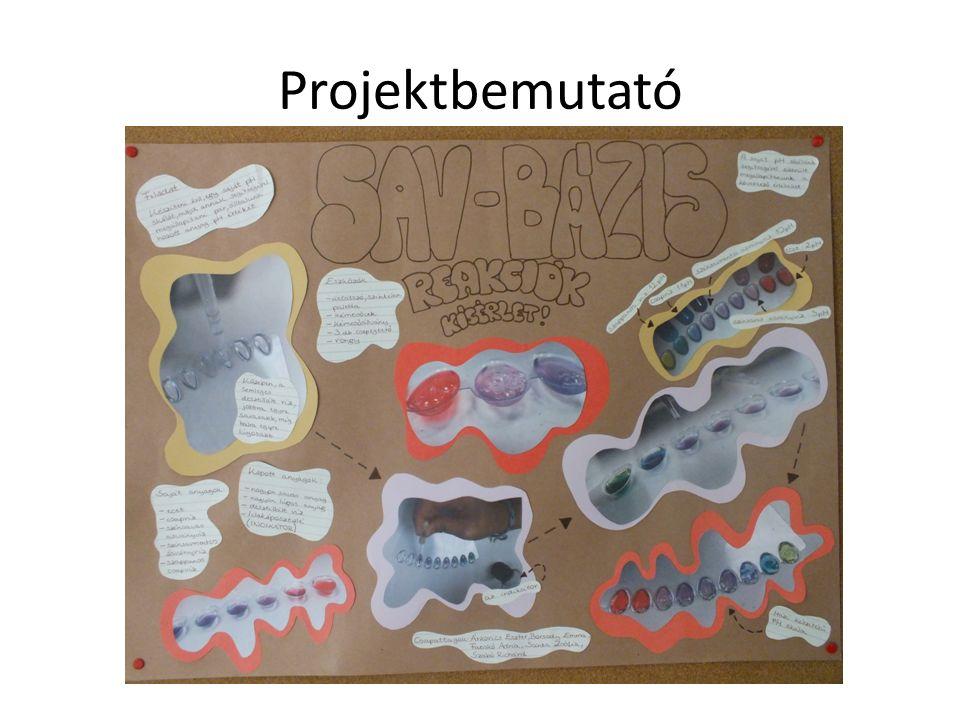 Projektbemutató