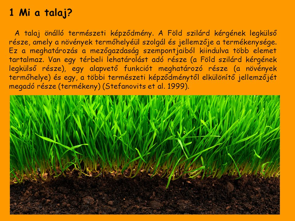 1 Mi a talaj. A talaj önálló természeti képződmény.