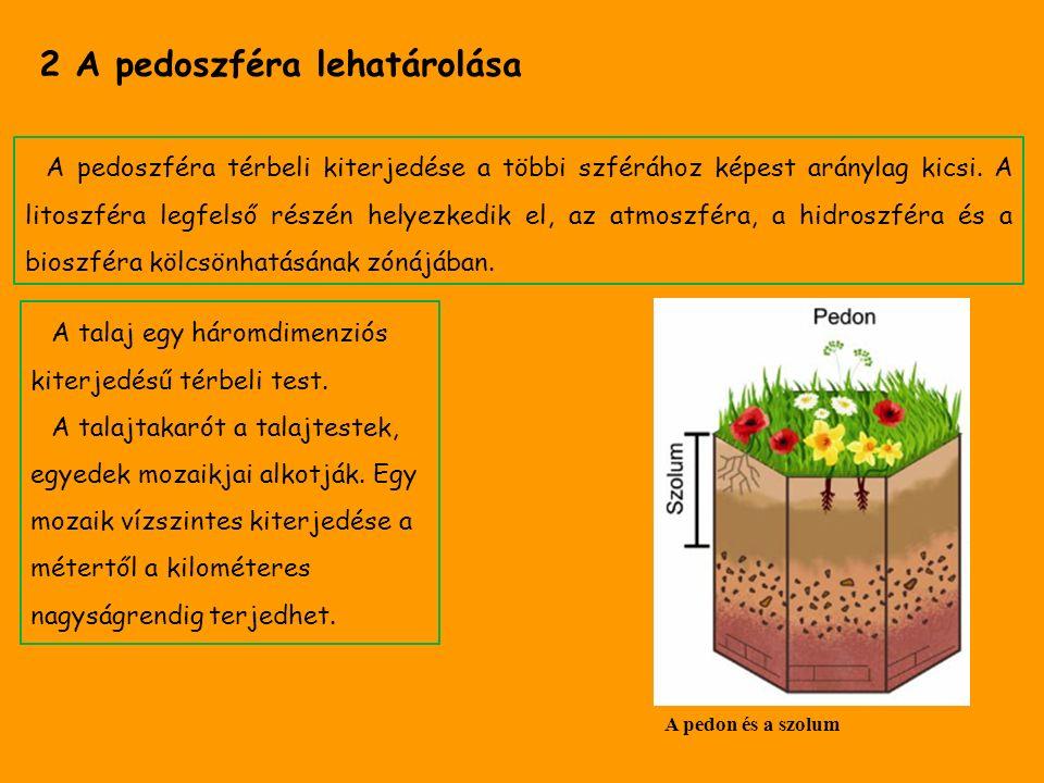 2 A pedoszféra lehatárolása A pedoszféra térbeli kiterjedése a többi szférához képest aránylag kicsi. A litoszféra legfelső részén helyezkedik el, az