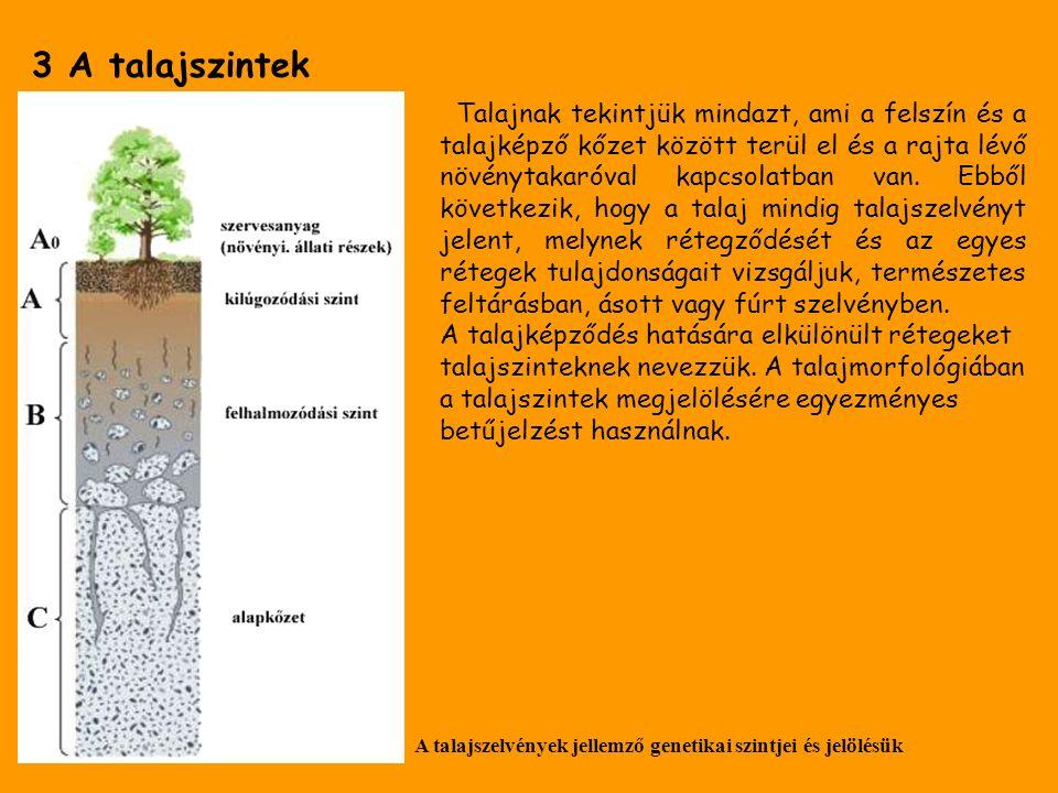 3 A talajszintek Talajnak tekintjük mindazt, ami a felszín és a talajképző kőzet között terül el és a rajta lévő növénytakaróval kapcsolatban van.