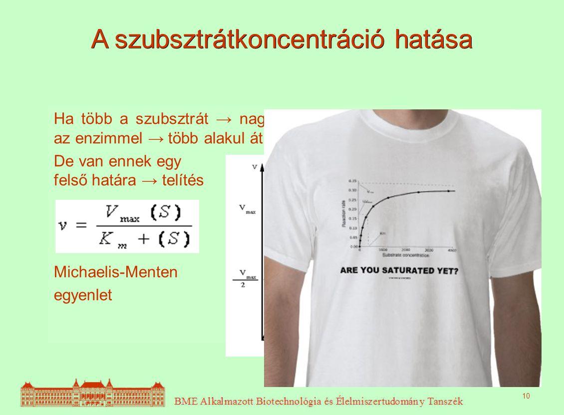 A szubsztrátkoncentráció hatása Ha több a szubsztrát → nagyobb valószínűséggel találkoznak az enzimmel → több alakul át → nagyobb reakciósebesség. De