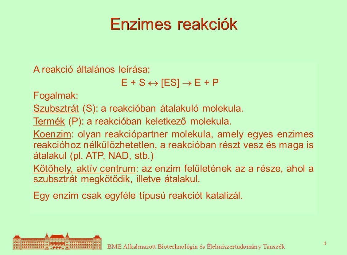 Enzimes reakciók A reakció általános leírása: E + S  [ES]  E + P Fogalmak: Szubsztrát (S): a reakcióban átalakuló molekula. Termék (P): a reakcióban