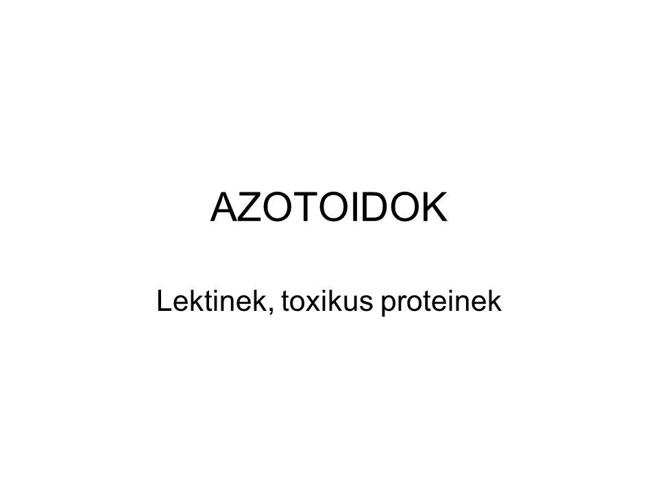 AZOTOIDOK Lektinek, toxikus proteinek