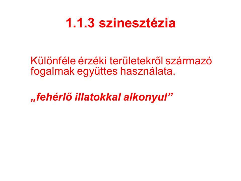 1.1.3 szinesztézia Különféle érzéki területekről származó fogalmak együttes használata.