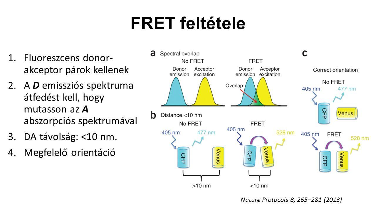 FRET feltétele 1.Fluoreszcens donor- akceptor párok kellenek 2.A D emissziós spektruma átfedést kell, hogy mutasson az A abszorpciós spektrumával 3.DA távolság: <10 nm.