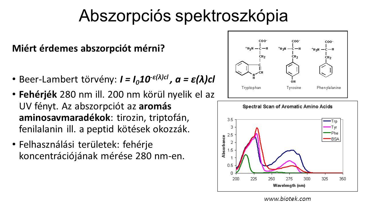 DNS UV abszorpciója A DNS-nek 260 nm-nél van abszorpciós csúcsa, ami a 4-féle bázis spektrumából adódik.