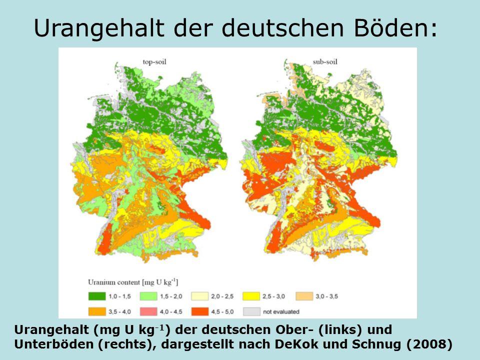 Urangehalt der deutschen Böden: Urangehalt (mg U kg -1 ) der deutschen Ober- (links) und Unterböden (rechts), dargestellt nach DeKok und Schnug (2008)