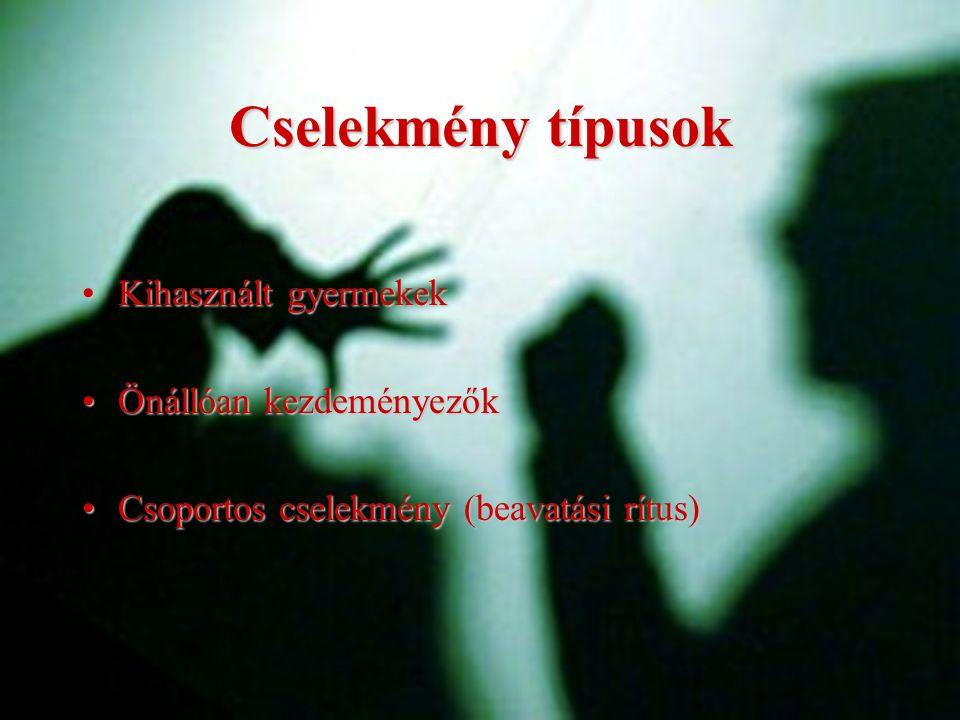 Cselekmény típusok Kihasznált gyermekekKihasznált gyermekek Önállóan kezdeményezőkÖnállóan kezdeményezők Csoportos cselekmény (beavatási rítus)Csoport